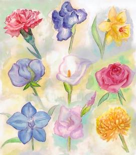 Floral Months